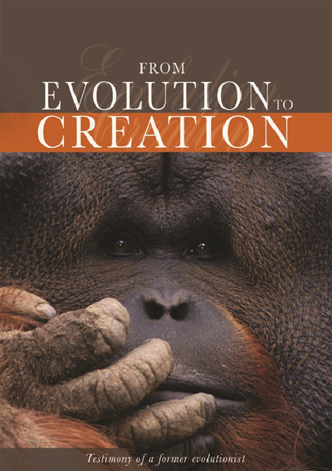 From Evolution to Creation D-EC
