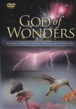 God of Wonder D-GW