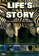 Life's Story & Life's Story 2 D-LS2